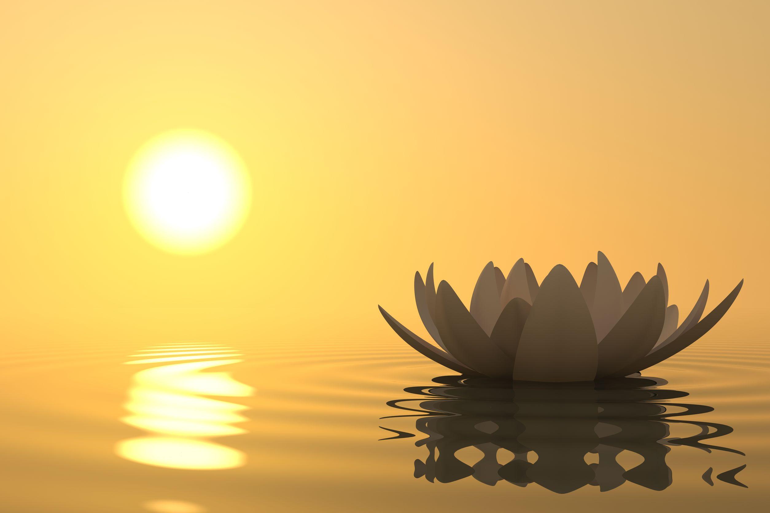 Meditatie Colectiva la Gradinita Rasarit